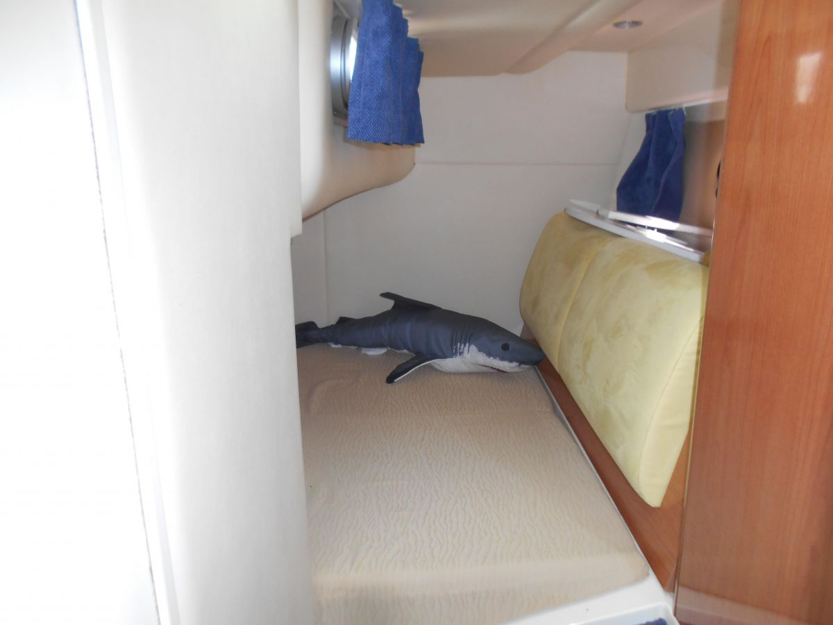 2005 Sealine SC29 Aft Cabin (Shark not included!)